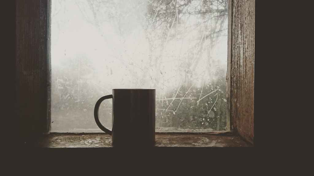 Mug in a bright window.